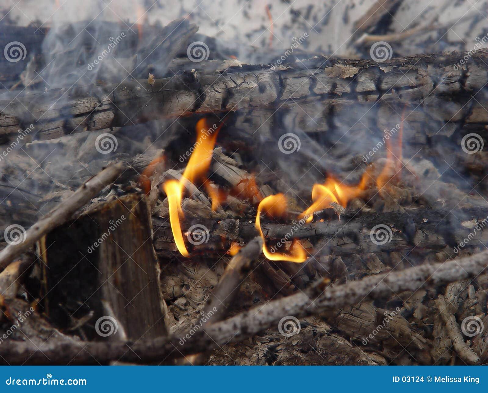 De Brand van het kamp