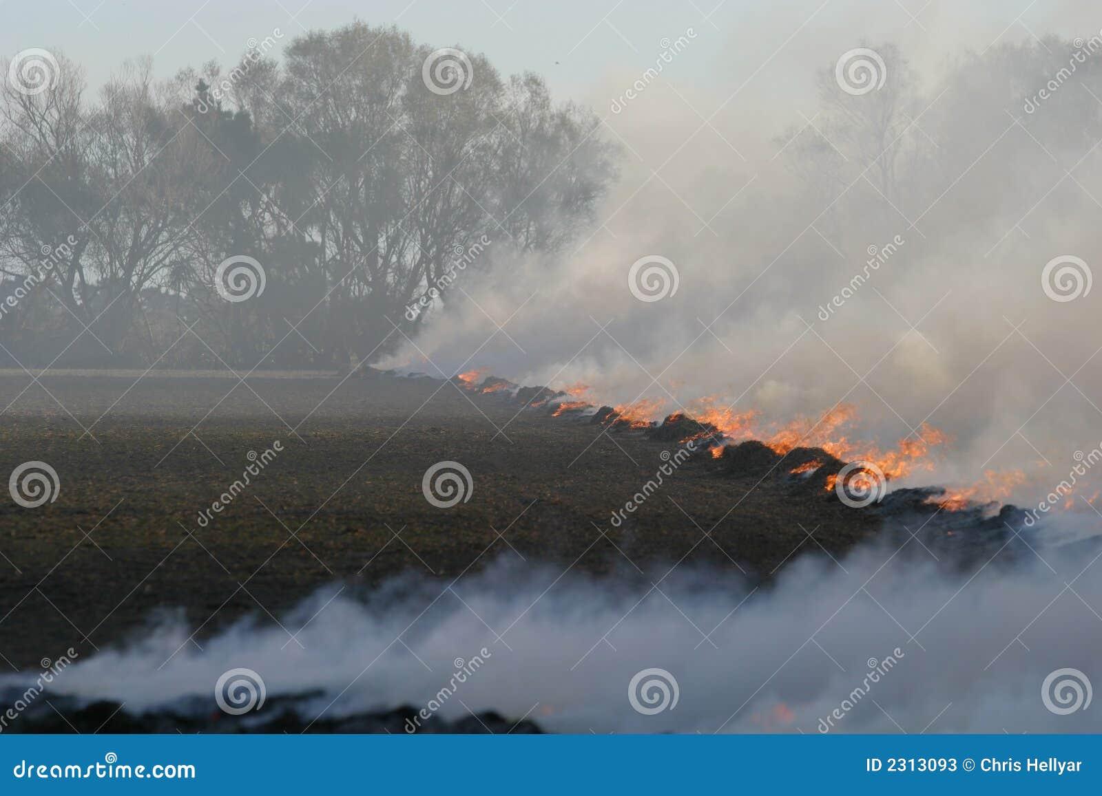 De brand van het stoppelveld