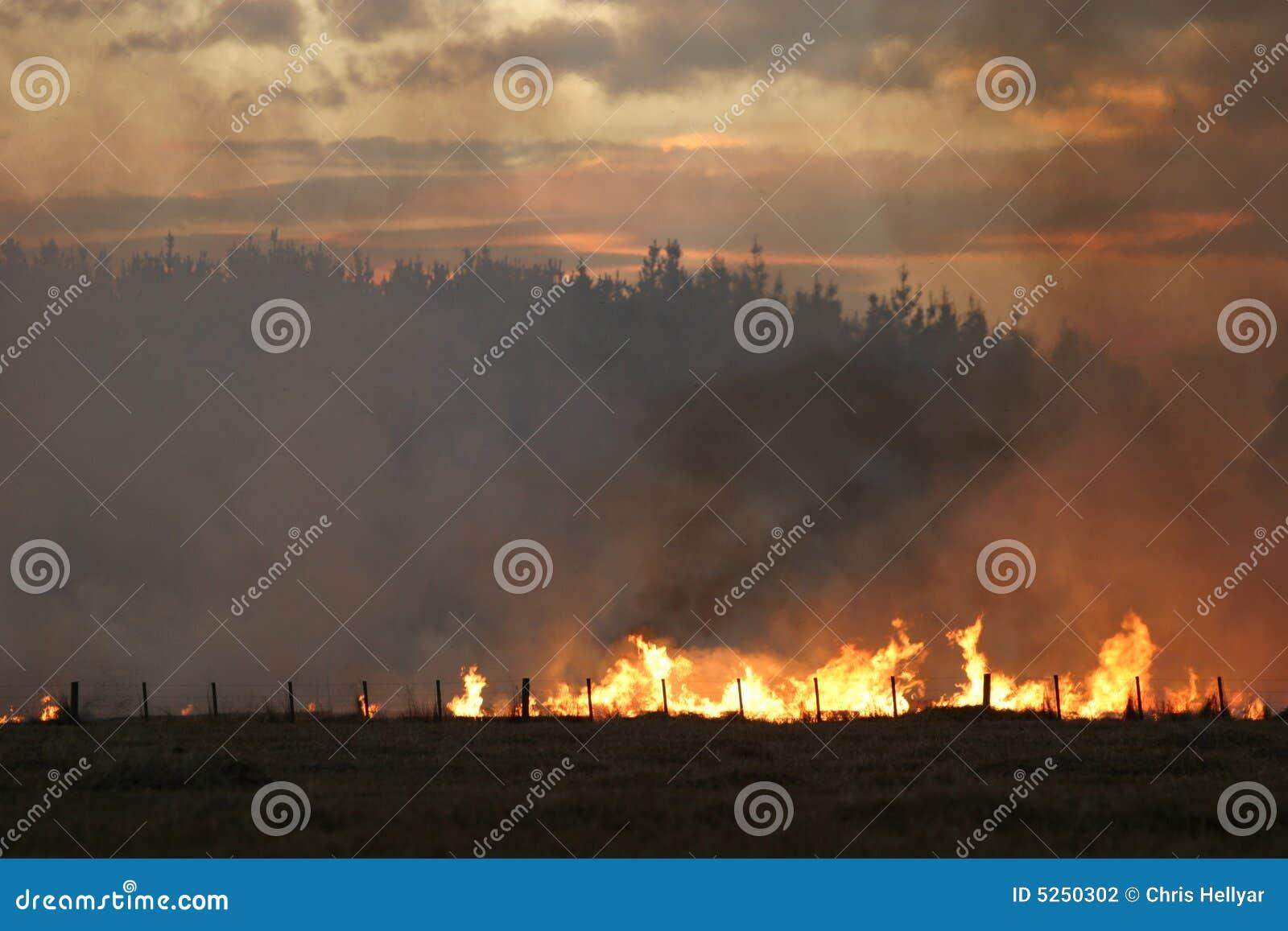 De brand van het stoppelveld bij Schemer