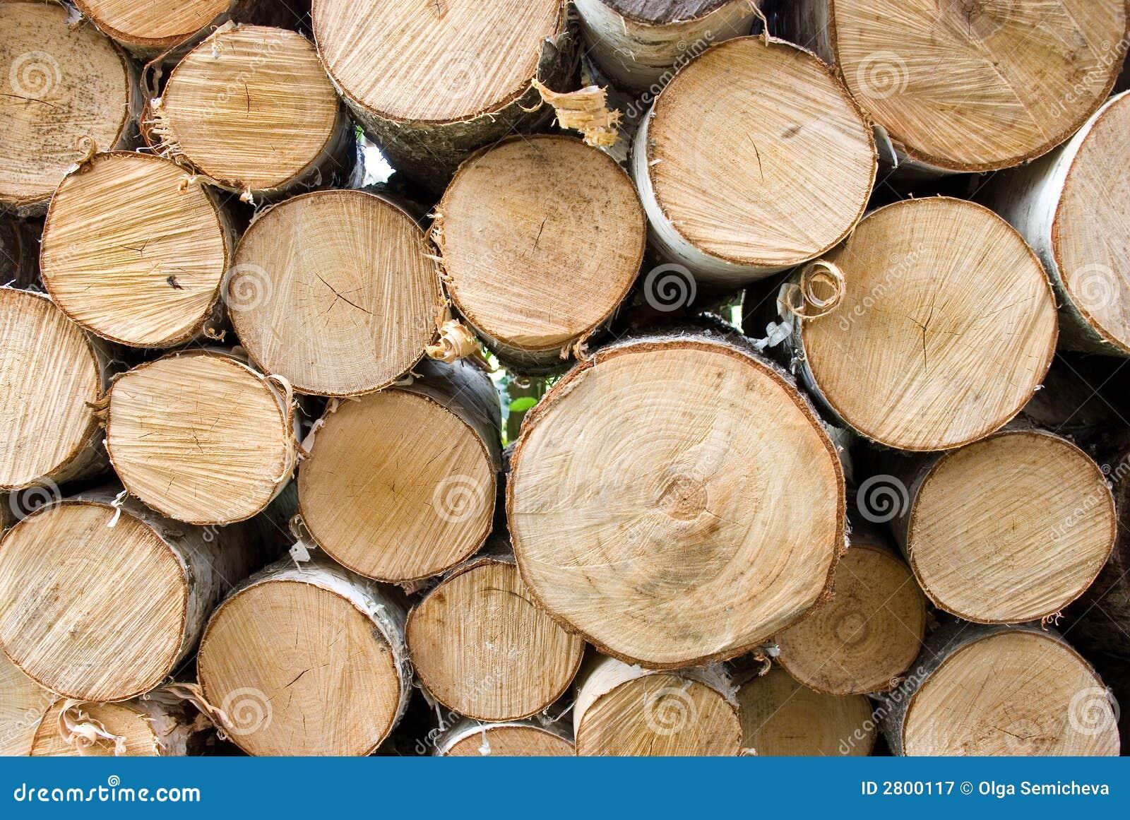 De brandhout van de berk