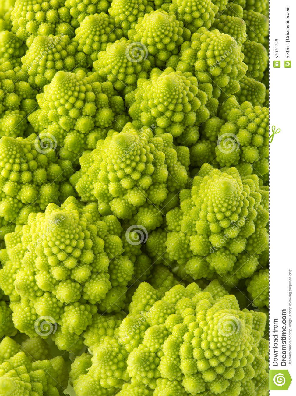 De broccoli van Romanesco