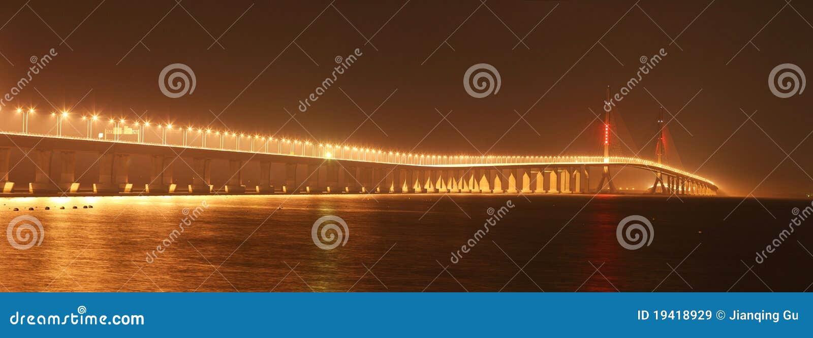 De Brug van de Rivier van Shanghai Yangtze