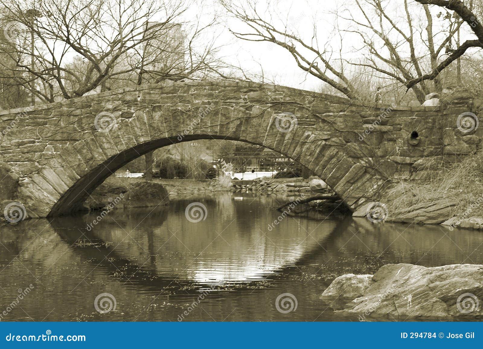 De Brug van de Steen van het Central Park