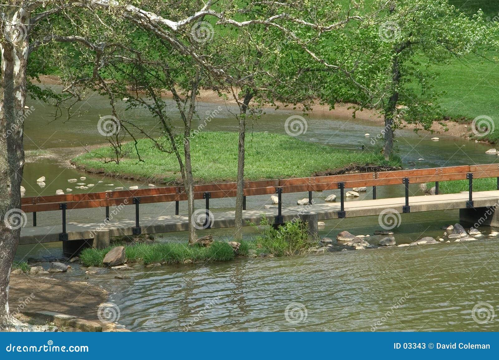 De brug van de voet
