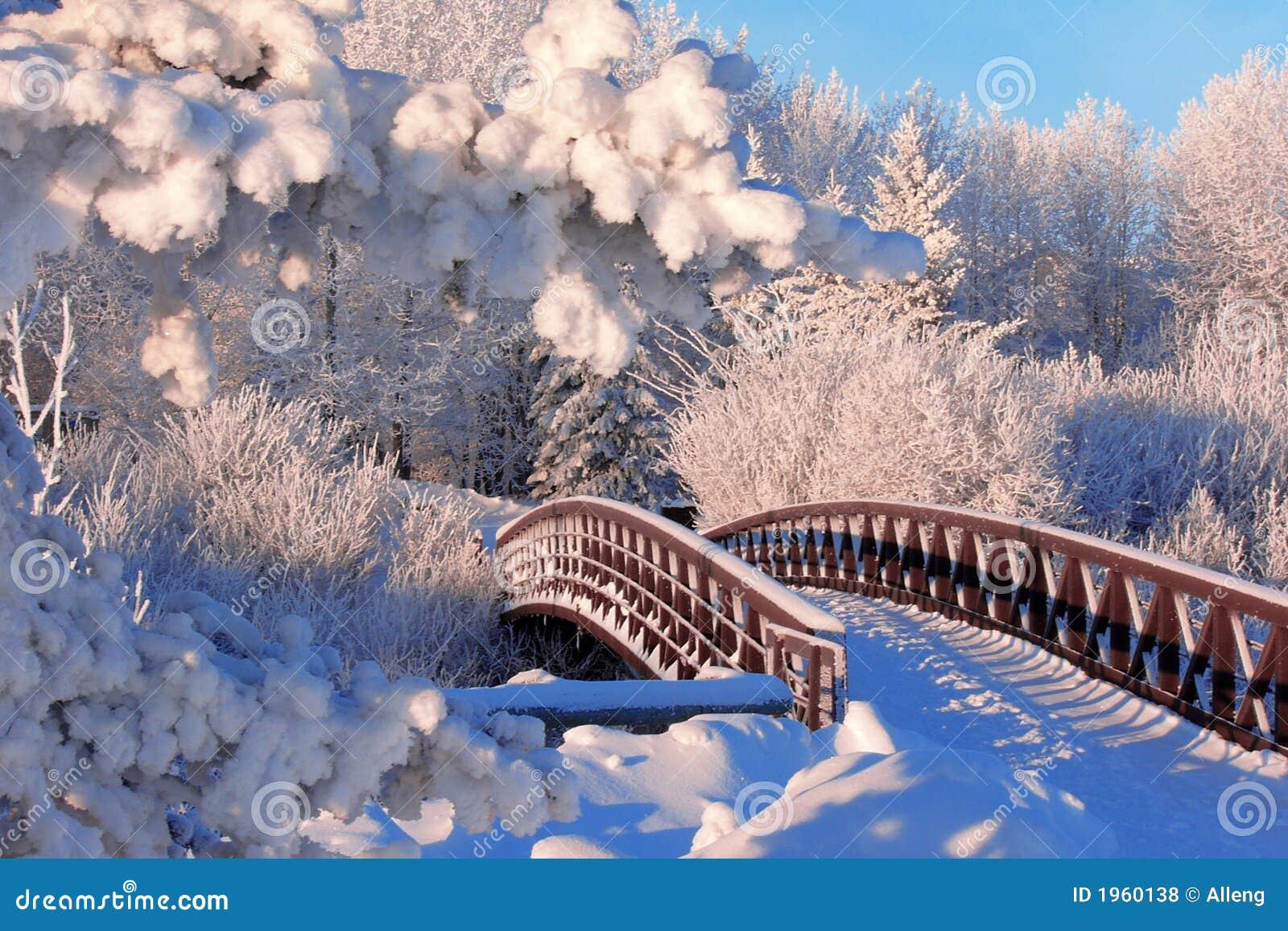De brug van de winter