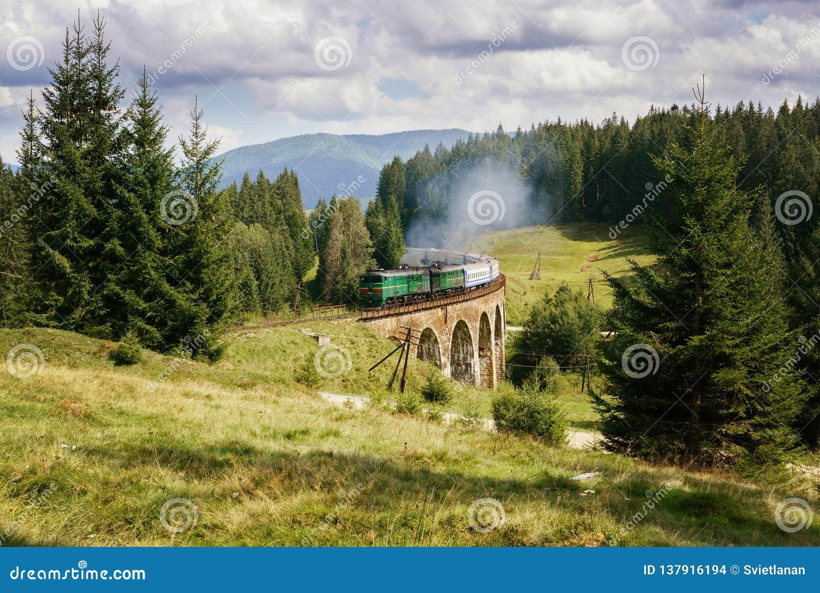 De brug van het spoorwegviaduct in de Oekraïne met de stoomtrein