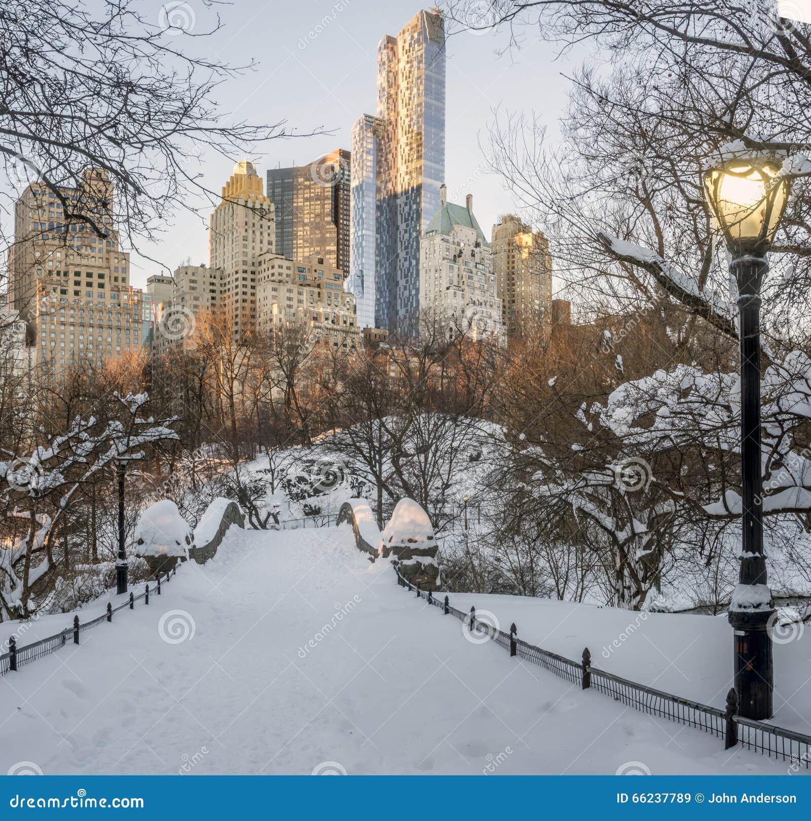 De brugCentral Park van Gapstow, de Stad van New York