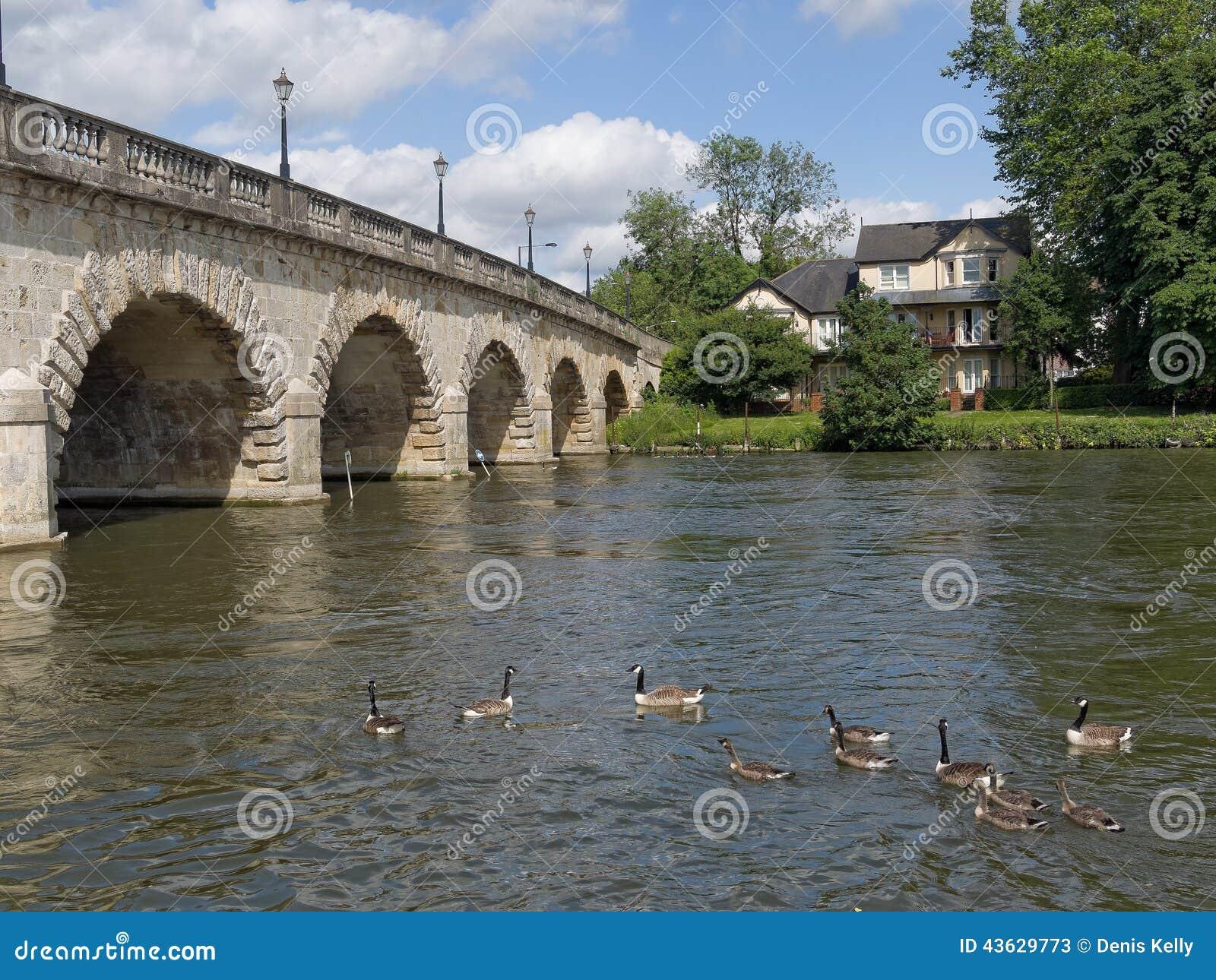 De Brugmaagdenvlies Engeland van riviertheems