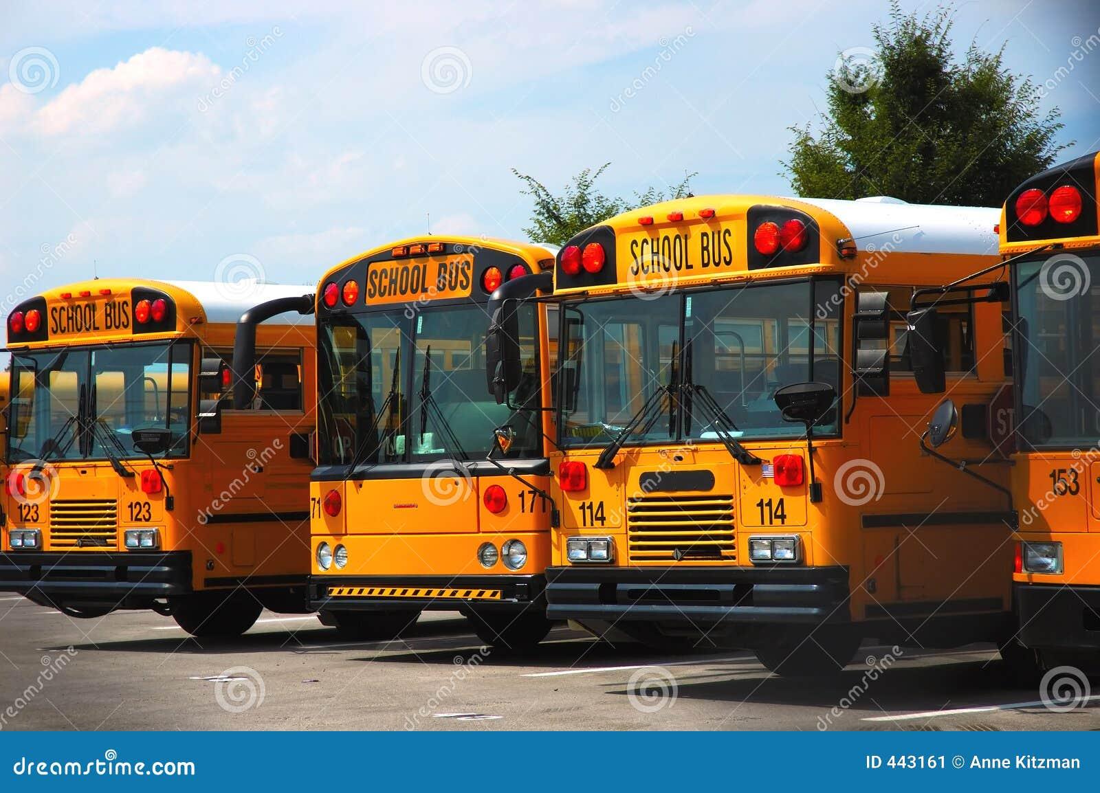 De Bussen van de school
