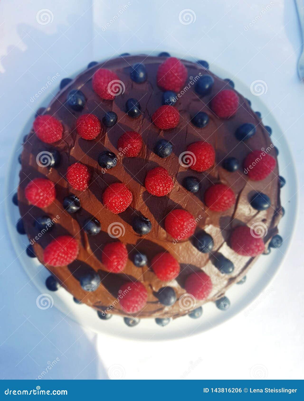 De cake van het chocoladefruit