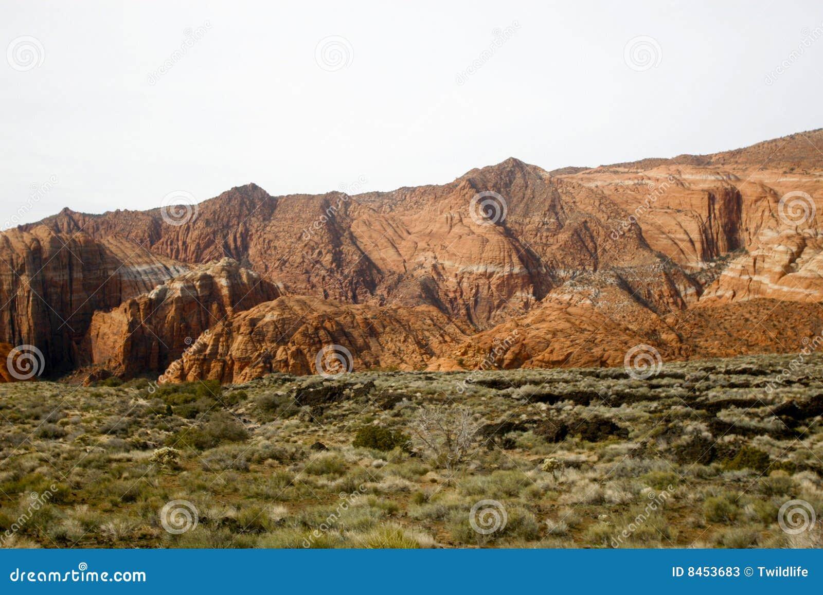 De Canion Utah van de sneeuw