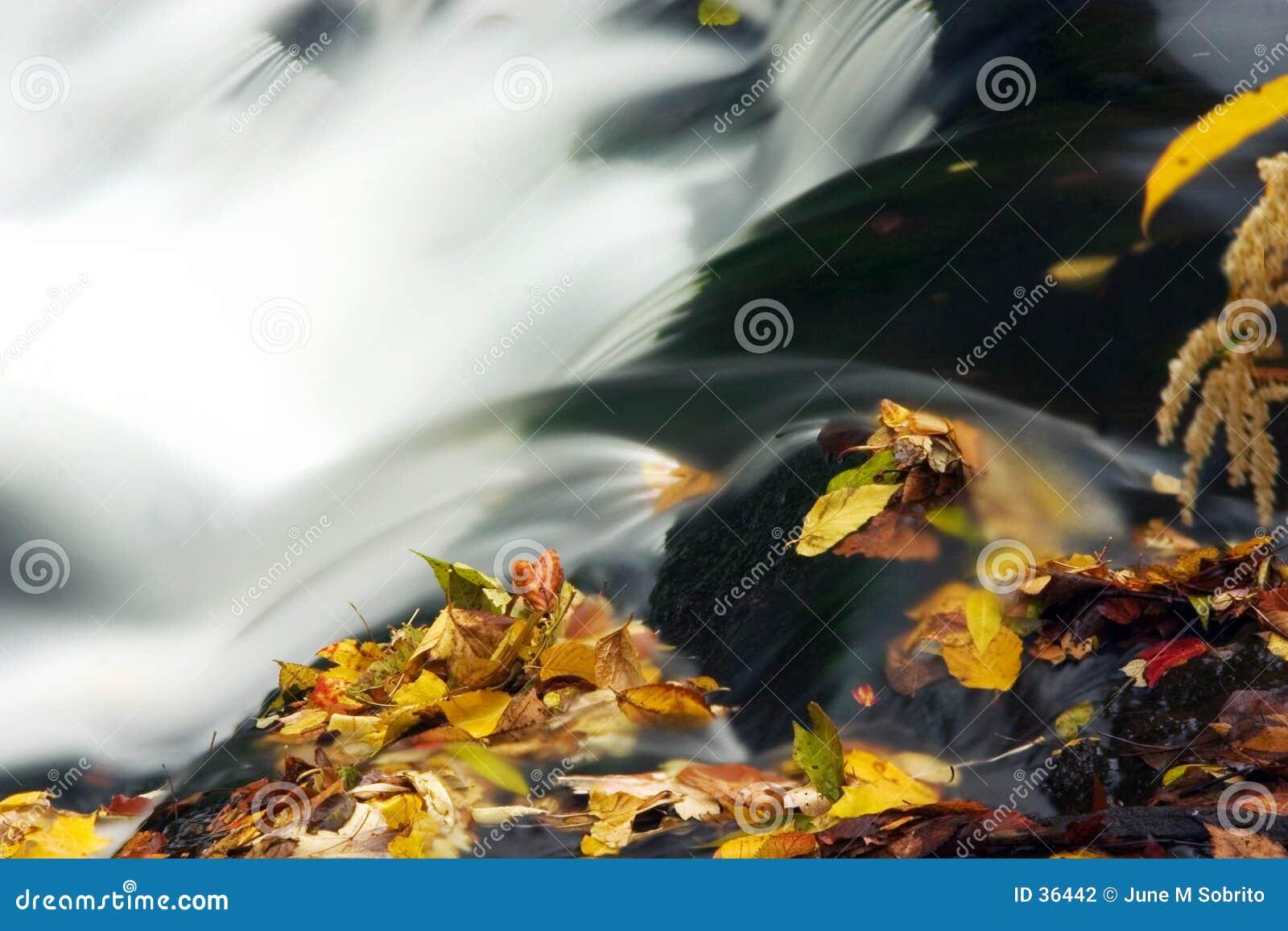 De Cascade van de herfst