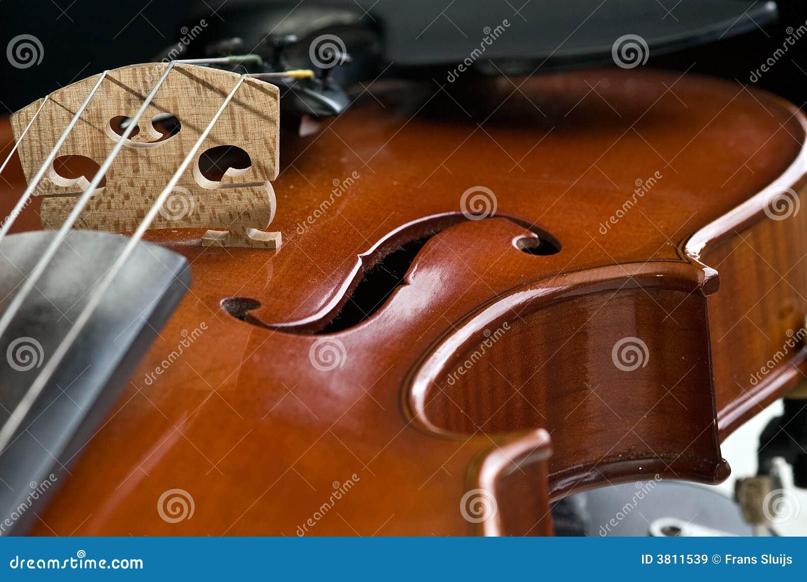 De close-up van de viool