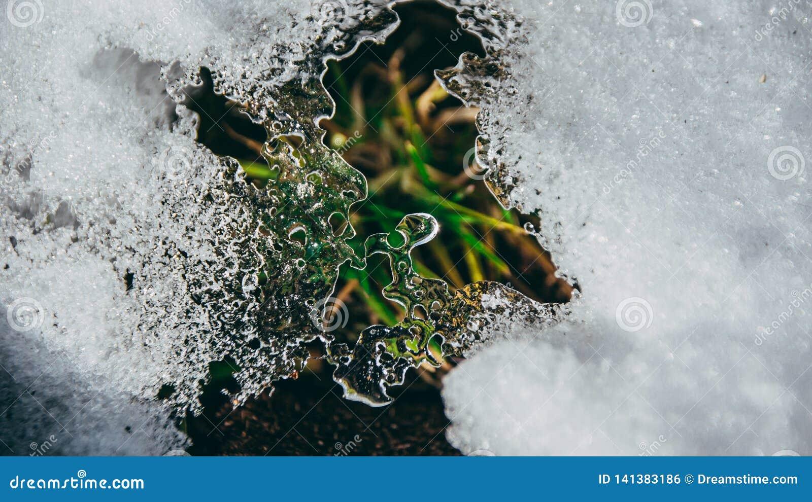 De close-up van ijskristallen met gras