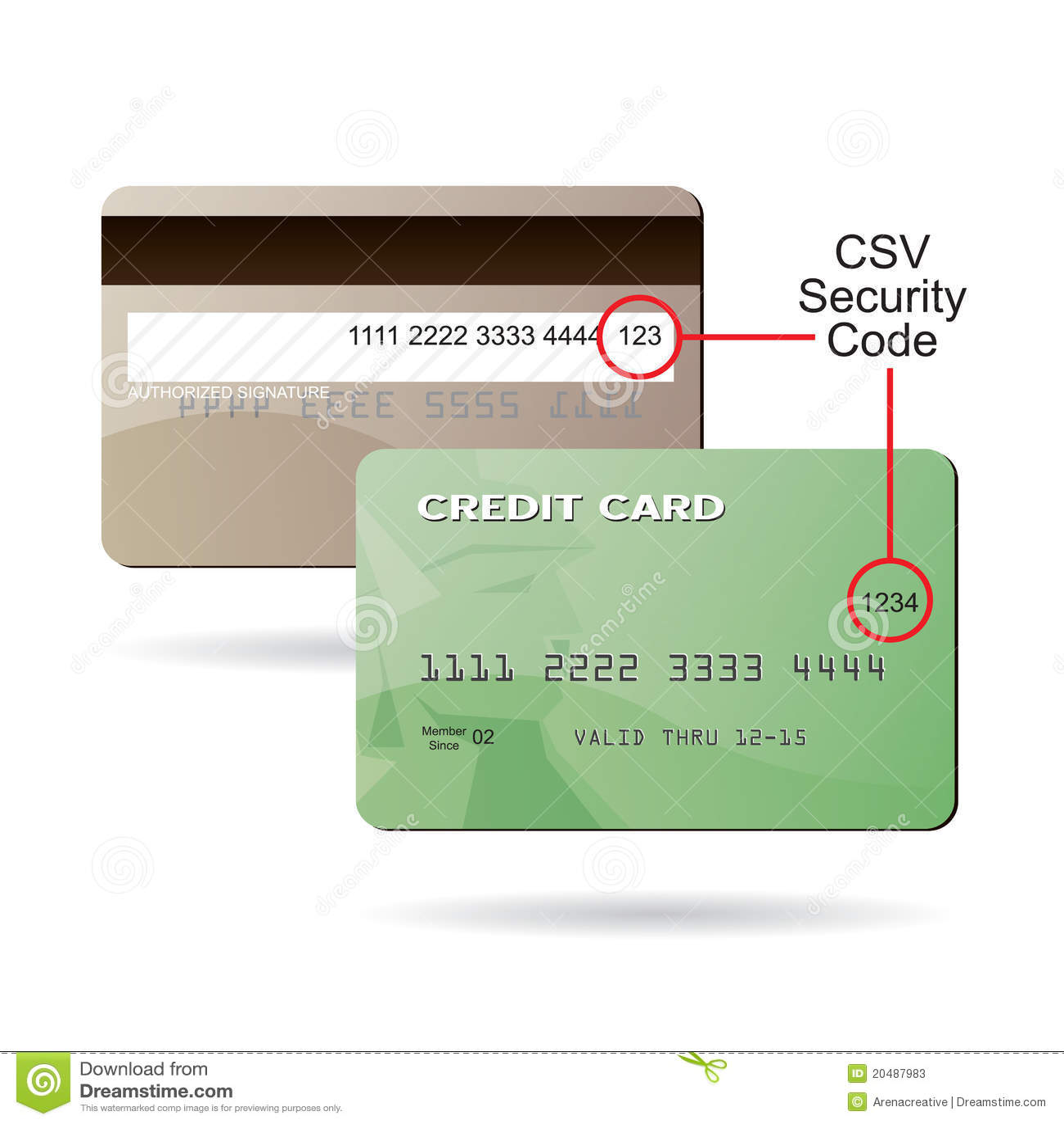 De Code Van De Veiligheid Van De Creditcard CSV Vector