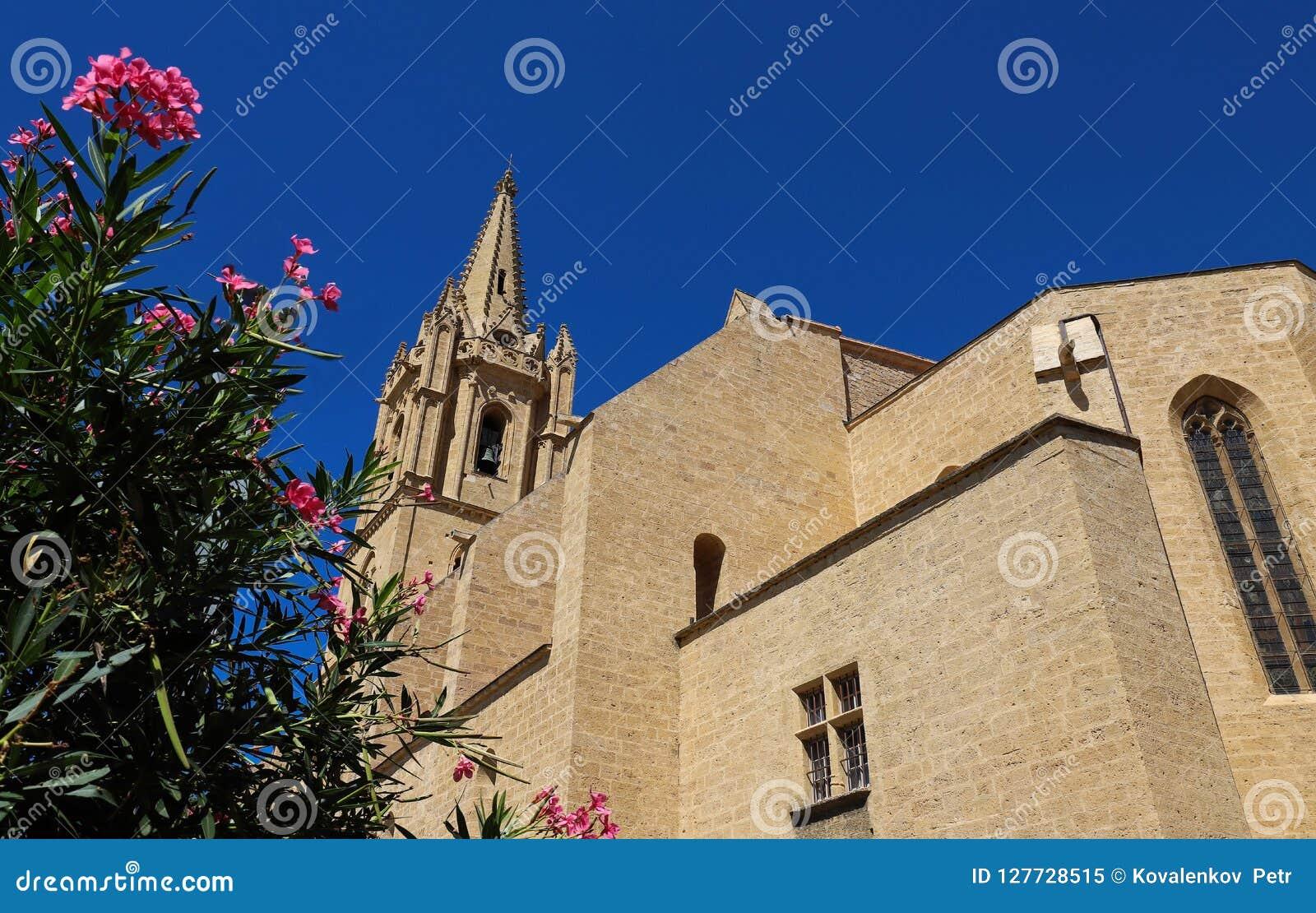 De collegekerk Saint Laurent is een uitstekend voorbeeld van de zuidelijke Gotische stijl van Frankrijk ` s Salon de Provence, Fr