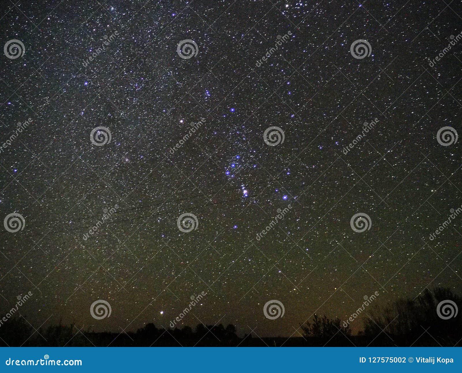 De constellatie van de sterrenorion van de nachthemel en Sirius-ster het waarnemen