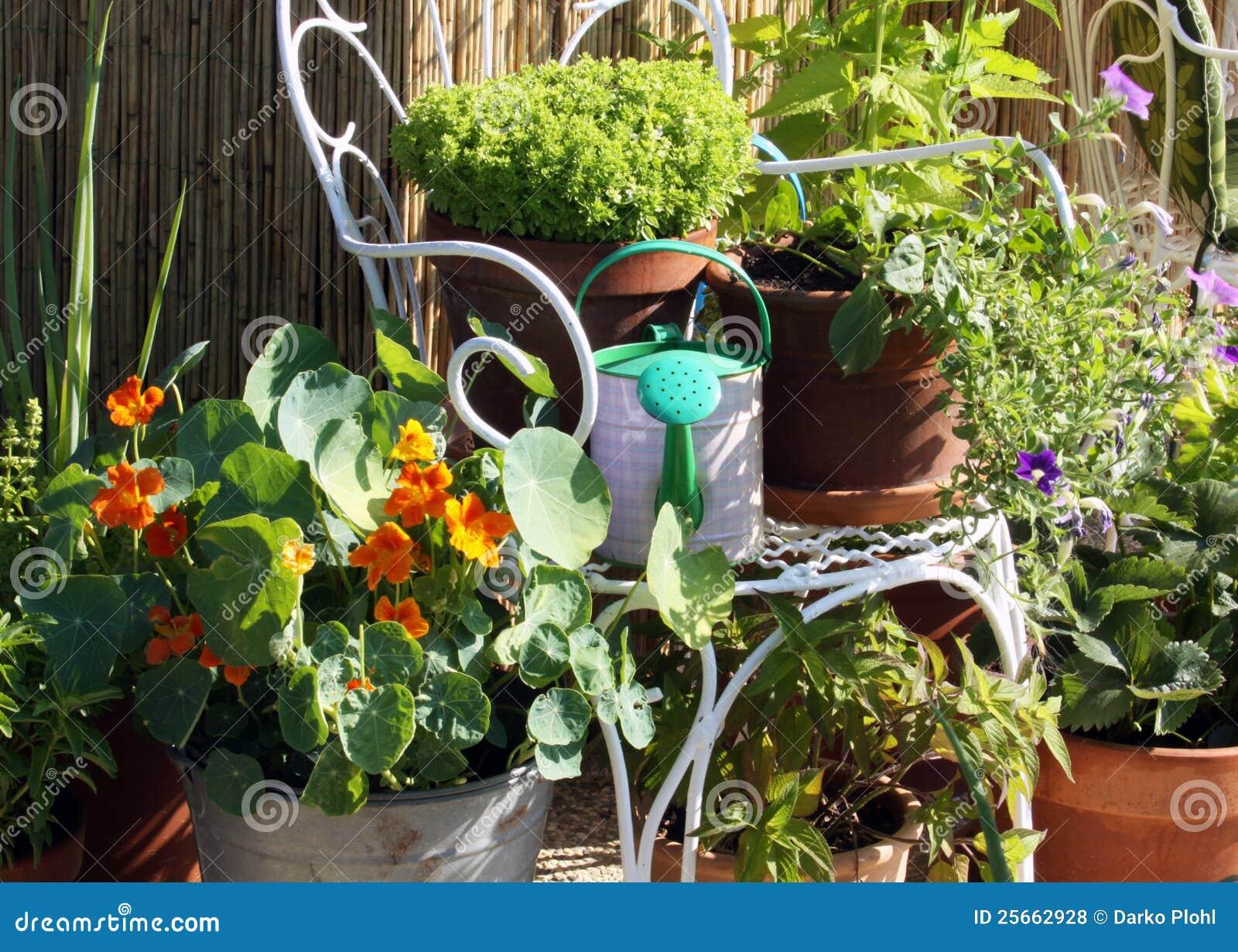 Tuinieren Op Balkon : De container van het terras en van het balkon het tuinieren stock