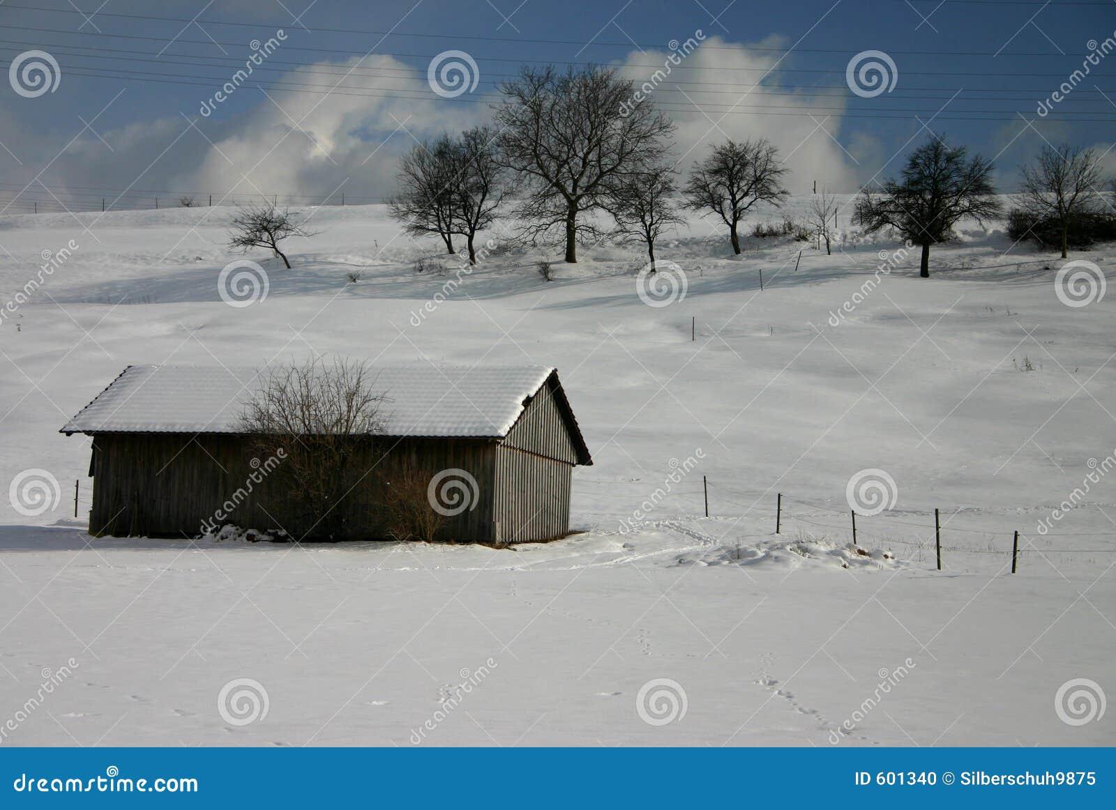 De dag van de heldere winter
