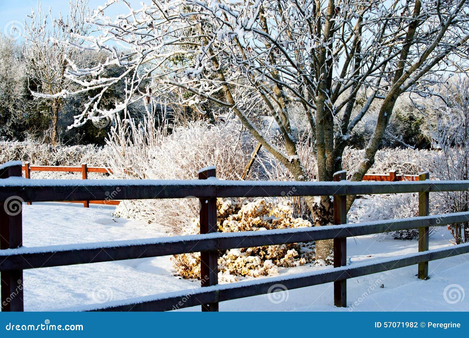 De dag van de winter in het dorp