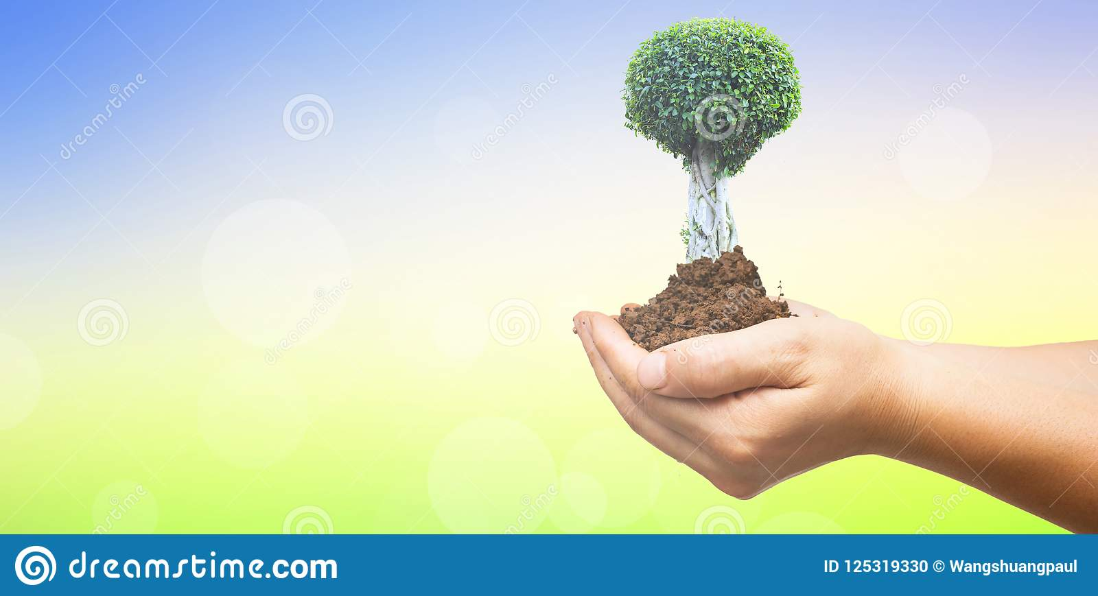 De dagconcept van het wereldmilieu: Menselijke handen die grote boom over groene bosachtergrond houden