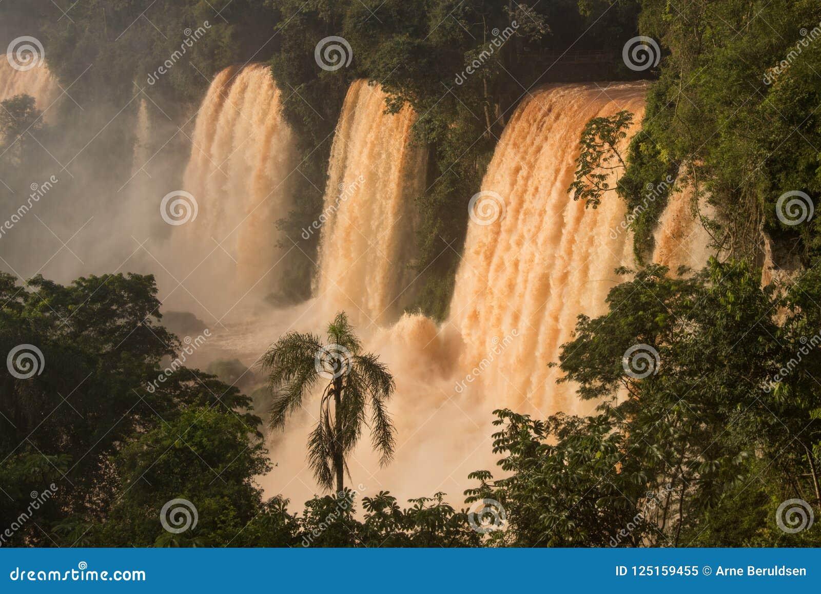De dalingen van Iguazu van Argentinië