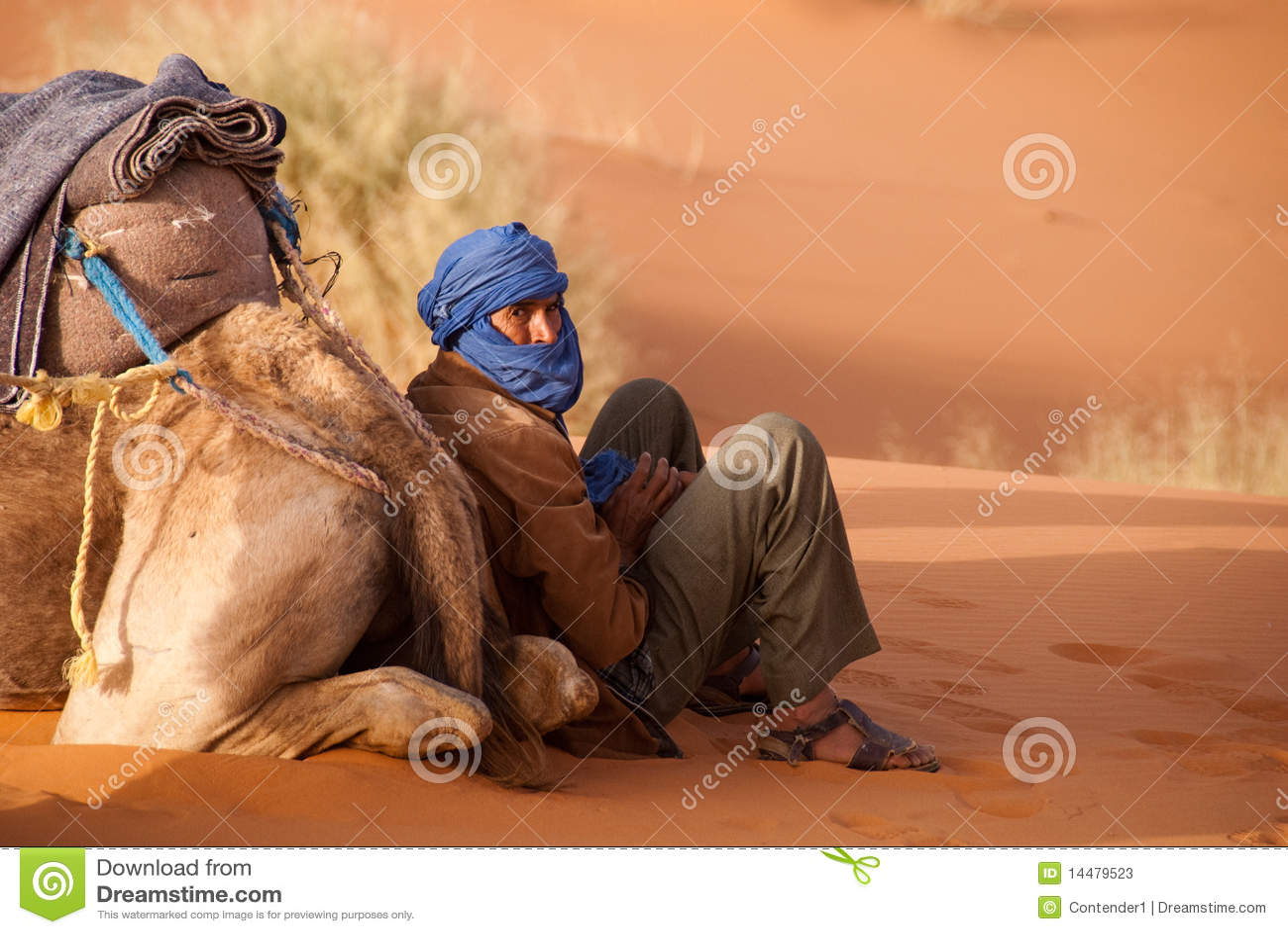 De de kameelgids van Berber neemt een onderbreking Marokko
