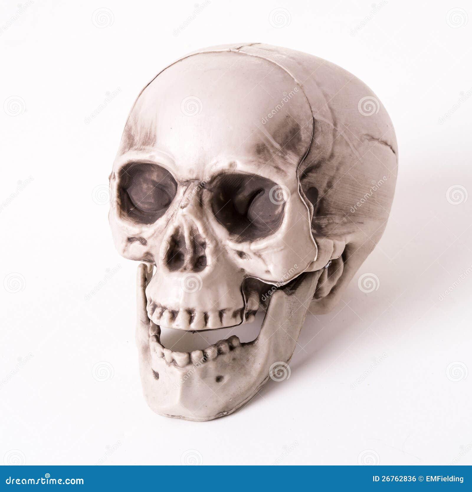 De decoratie van de schedel stock foto afbeelding for Decoratie schedel