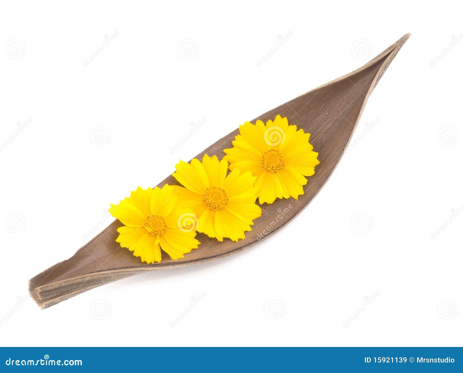 De decoratie van de zomer royalty vrije stock afbeeldingen afbeelding 15921139 - Decoratie geel ...