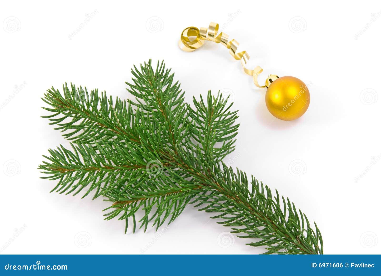 De decoratie van kerstmis en boomtak royalty vrije stock afbeelding afbeelding 6971606 - Afbeelding van decoratie ...