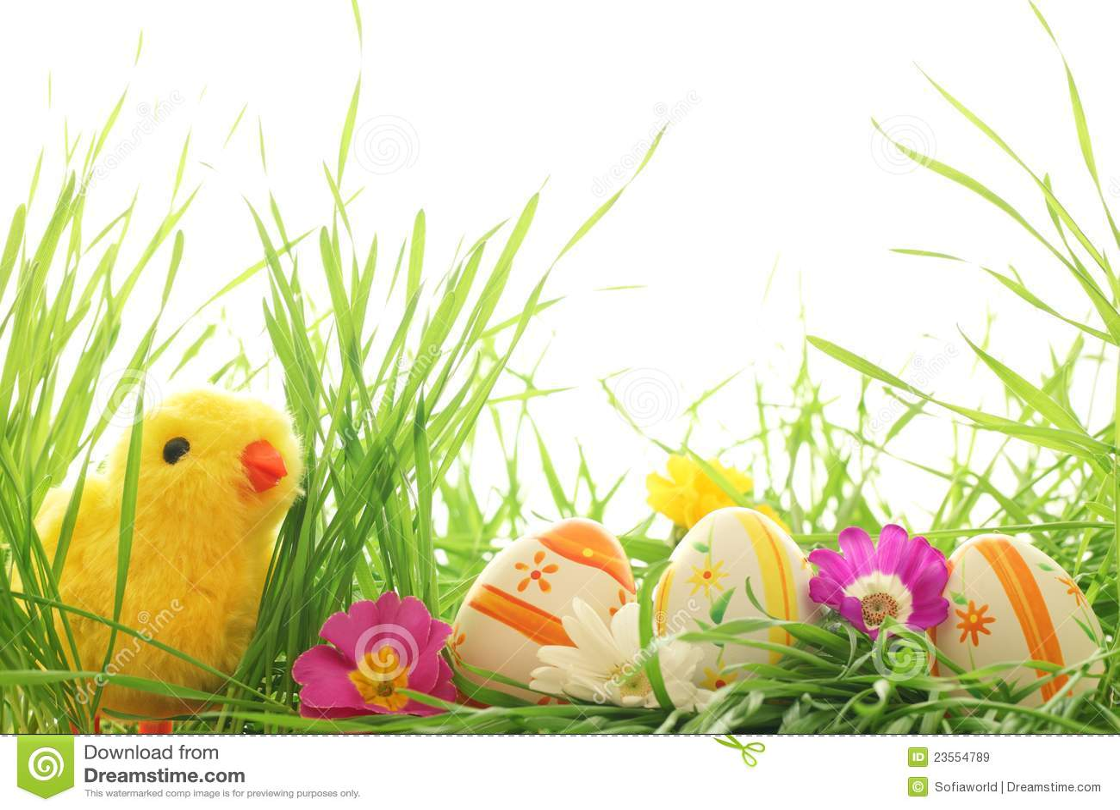 De decoratie van pasen met kuiken en eieren royalty vrije stock afbeeldingen beeld 23554789 - Decoratie van de villas ...