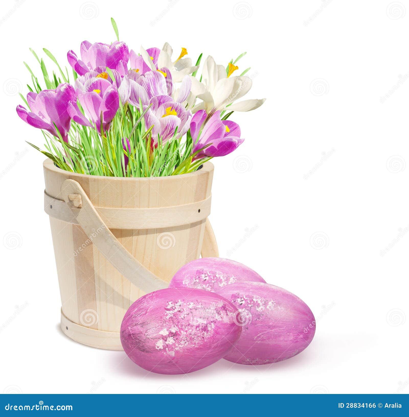 De decoratie van pasen met roze krokussen en eieren royalty vrije stock afbeelding afbeelding - Decoratie van de kamers van de meiden ...