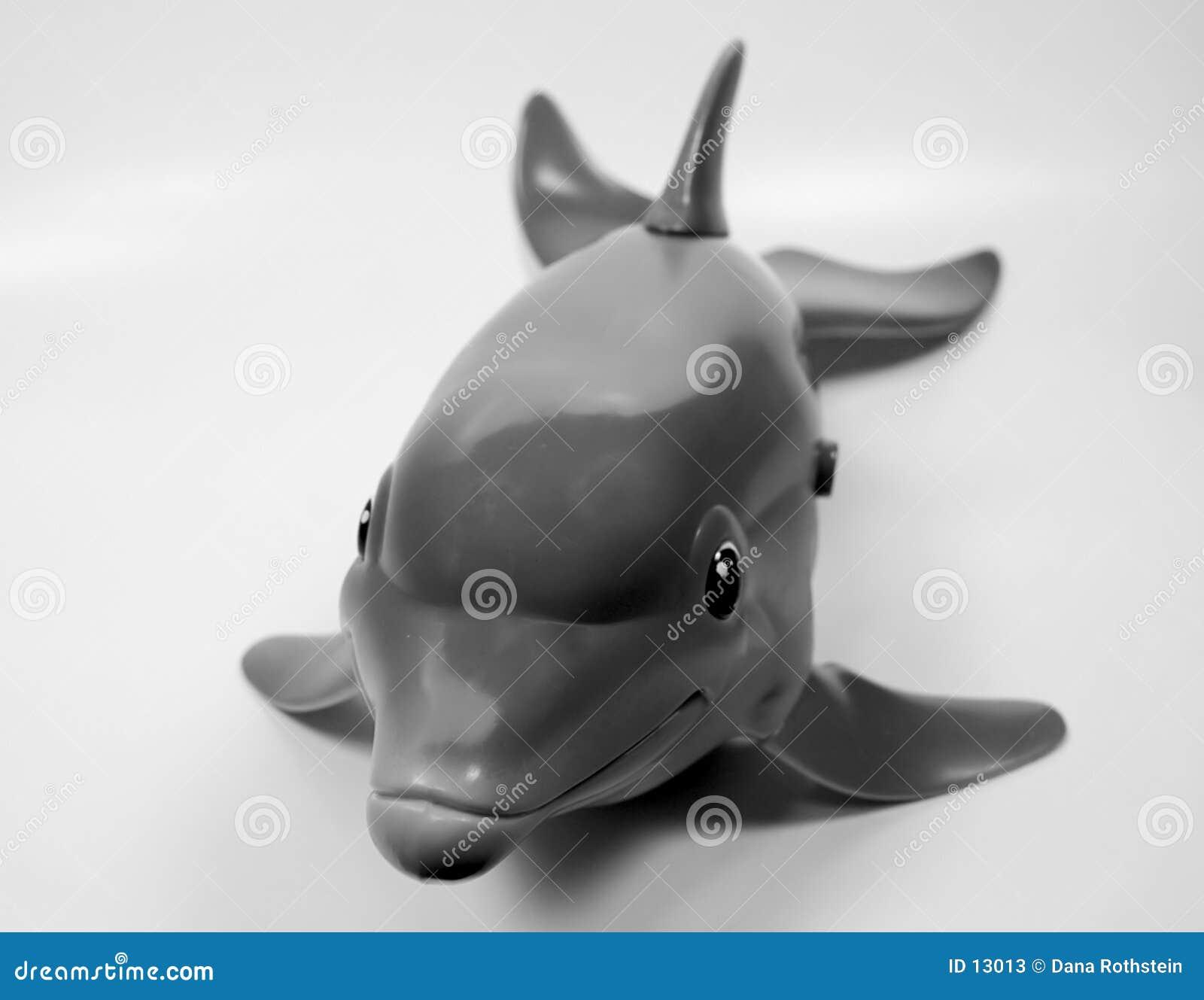 De Dolfijn van het stuk speelgoed