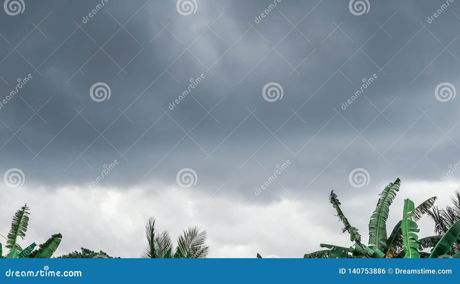 De Donkere wolk boven de groene bomen