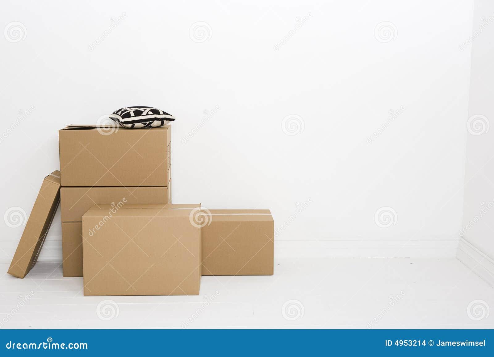 De dozen met werpen hoofdkussen