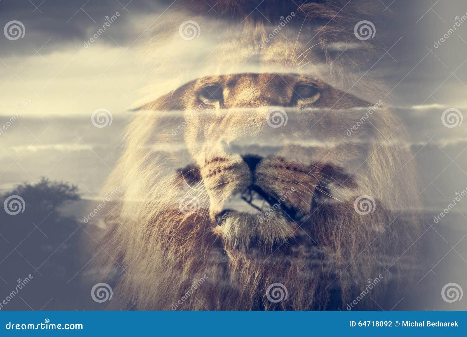 De dubbele blootstelling van leeuw en zet Kilimanjaro-savannelandschap op
