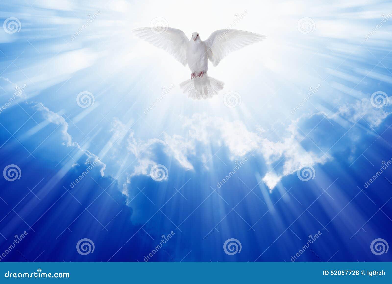 De Duif van de Heilige Geest