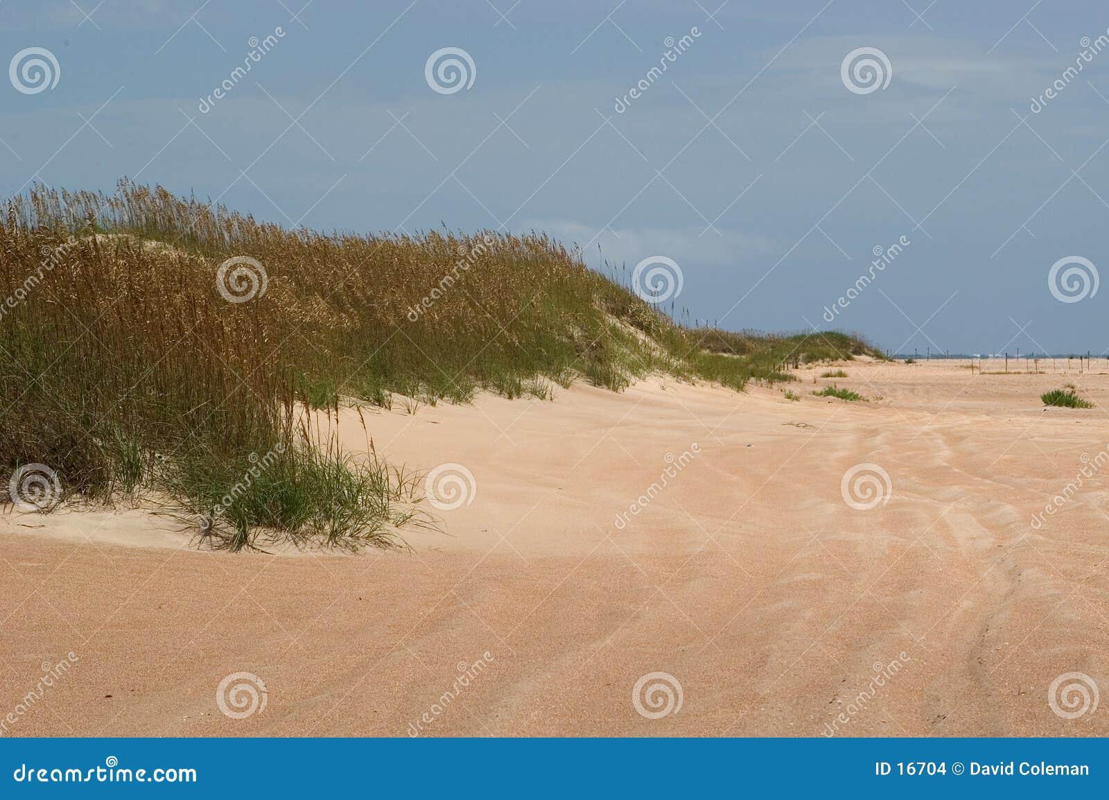 De duinen en het Strand komen samen