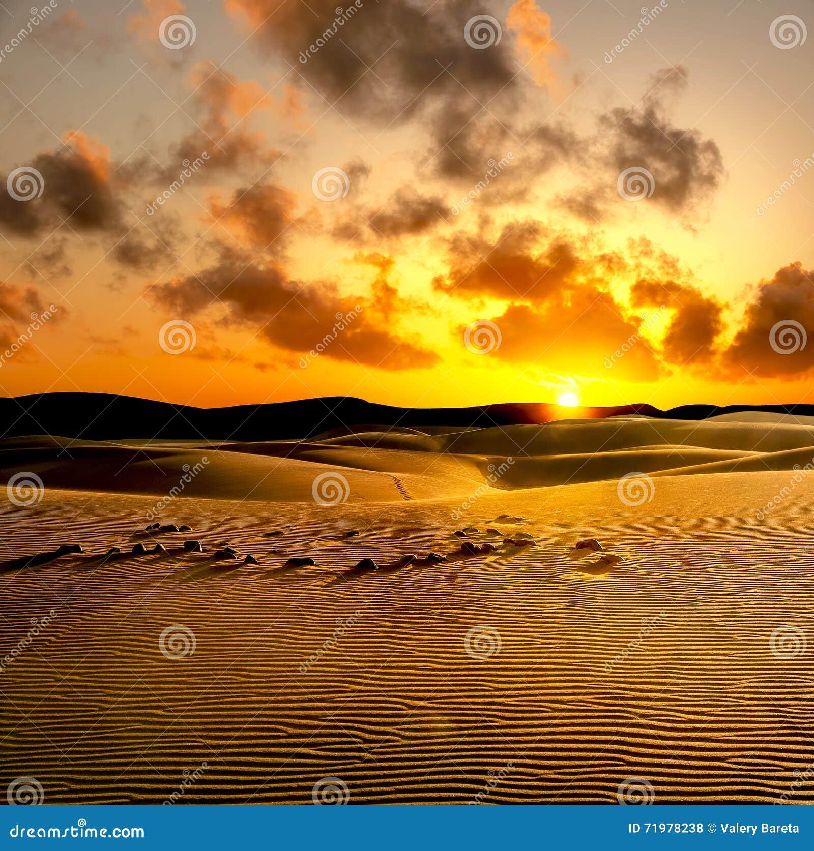 De duinen van het zand bij zonsondergang Maspalomas, Gran Canaria, Spanje