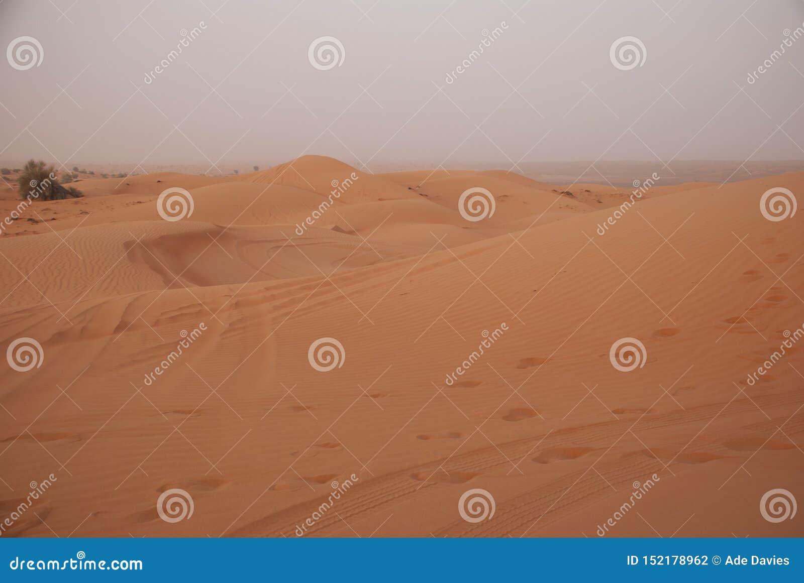 De duinen van het zand