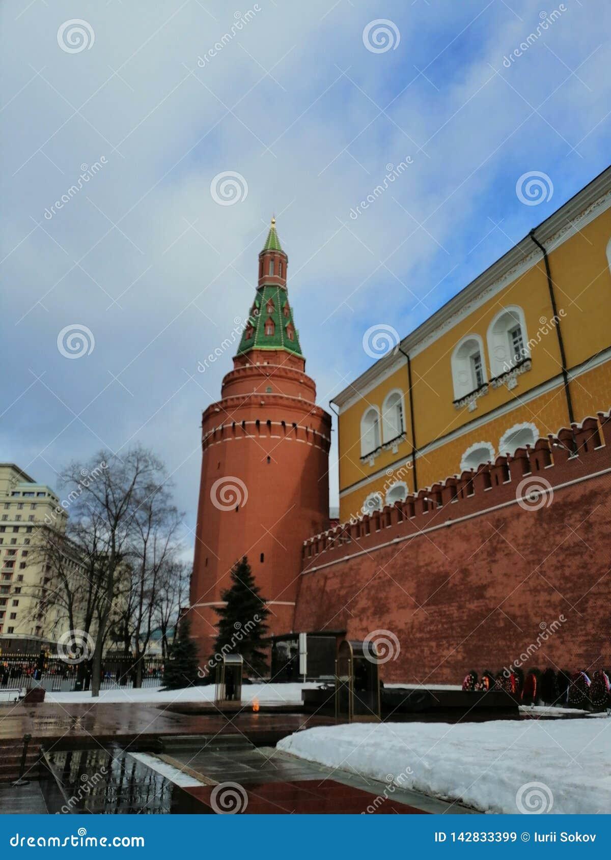 De eeuwige vlam op de achtergrond van de torens van het Kremlin
