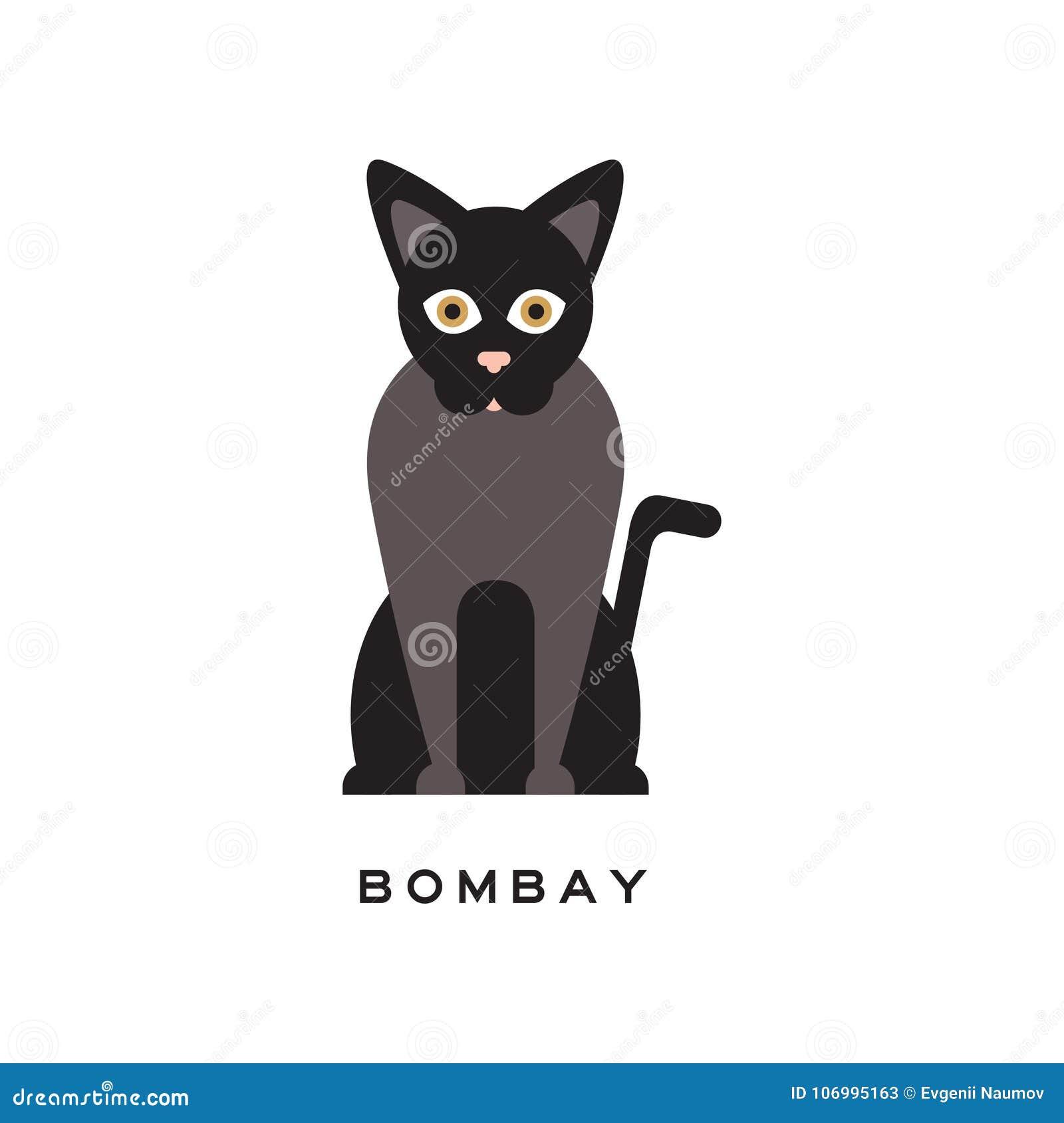 De elegante kat van Bombay Type van kortharige katachtig met zwarte laag, roze neus en bruine ogen Beeldverhaalkarakter van rasdi
