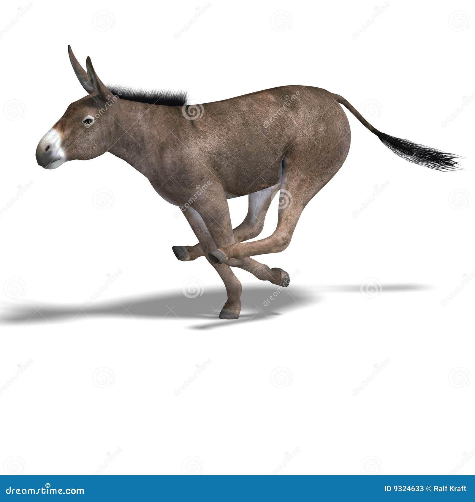 De ezel geeft terug