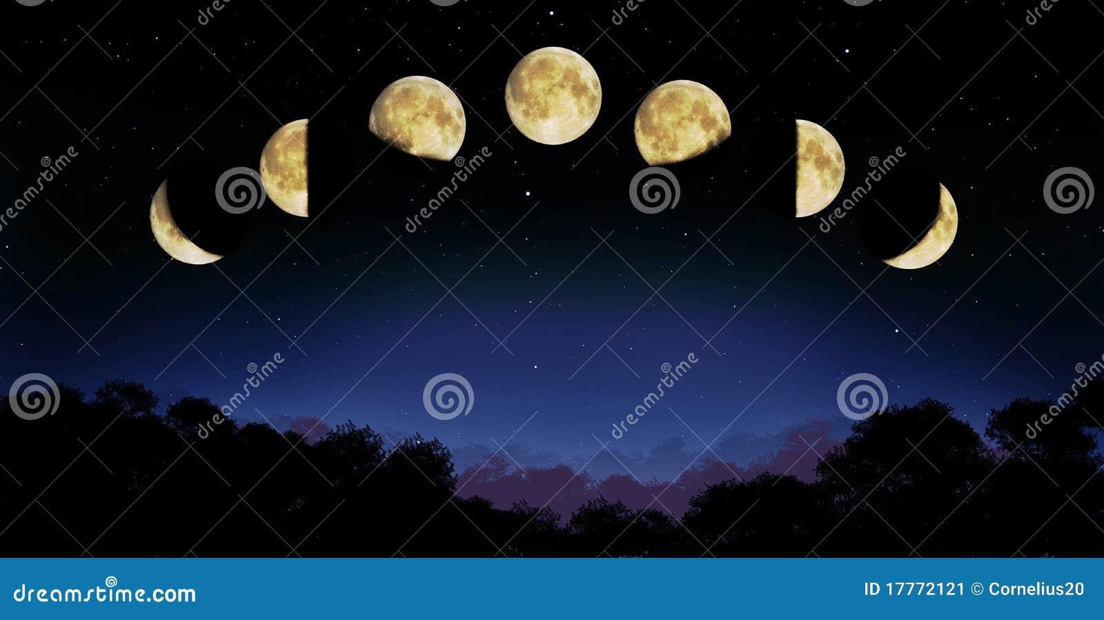 De fase van de maan