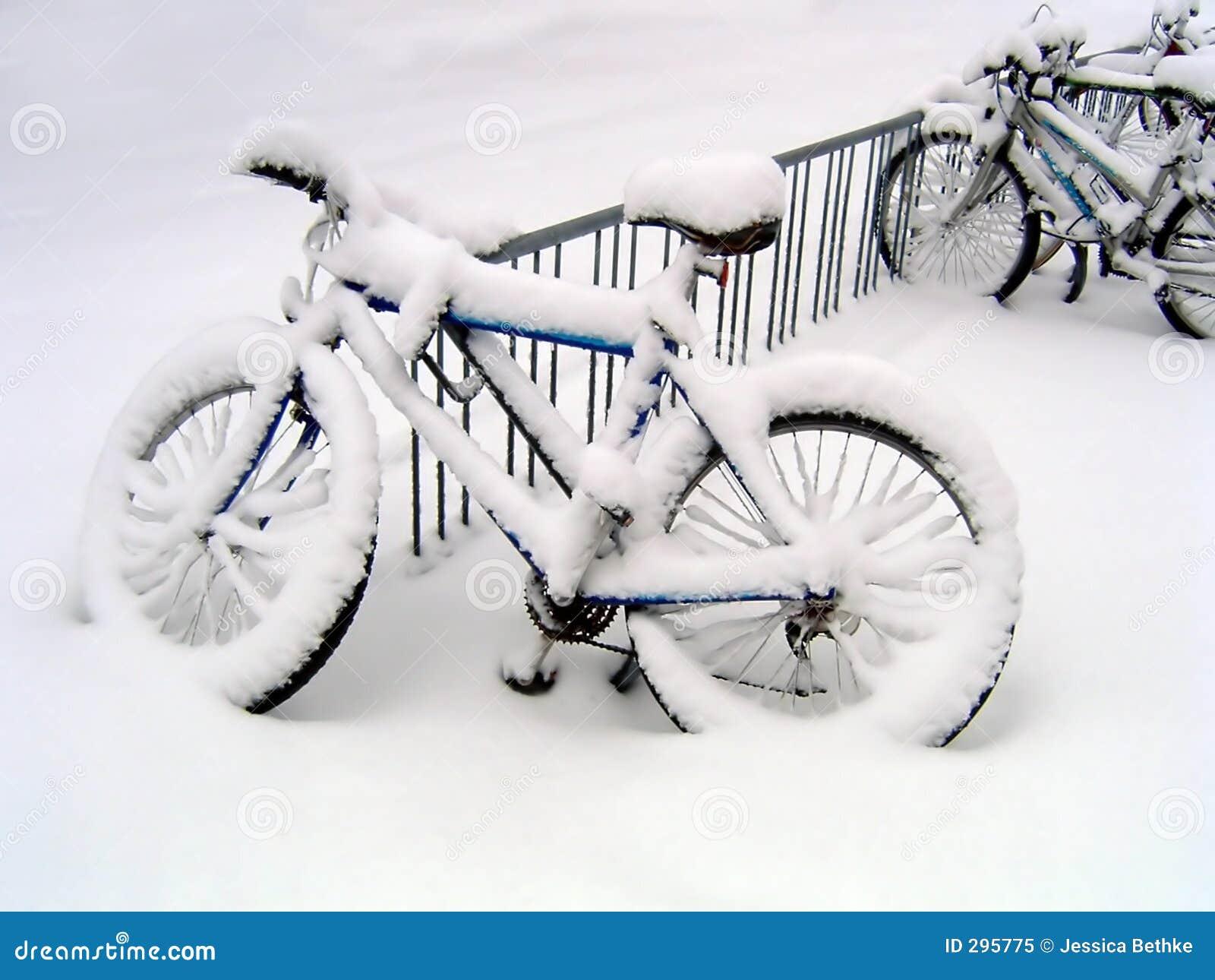 De Fietsen van de blizzard