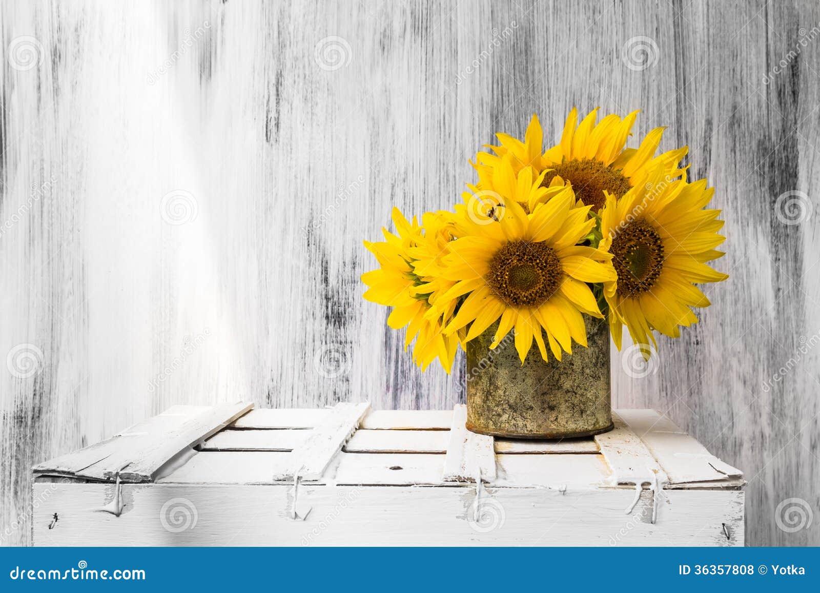 De fond toujours vintage blanc en bois de tournesol de fleur de la vie photos libres de droits - Bouquet de tournesol ...