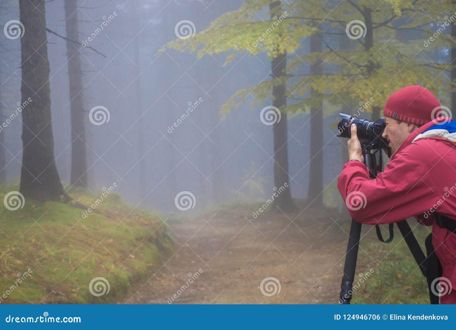 De fotograaf neemt beelden van het magische de herfstbos in dark