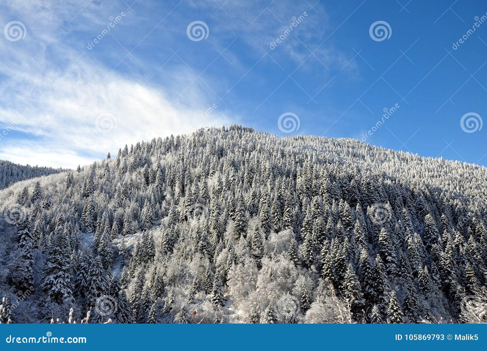 De fotografie van het de winterlandschap