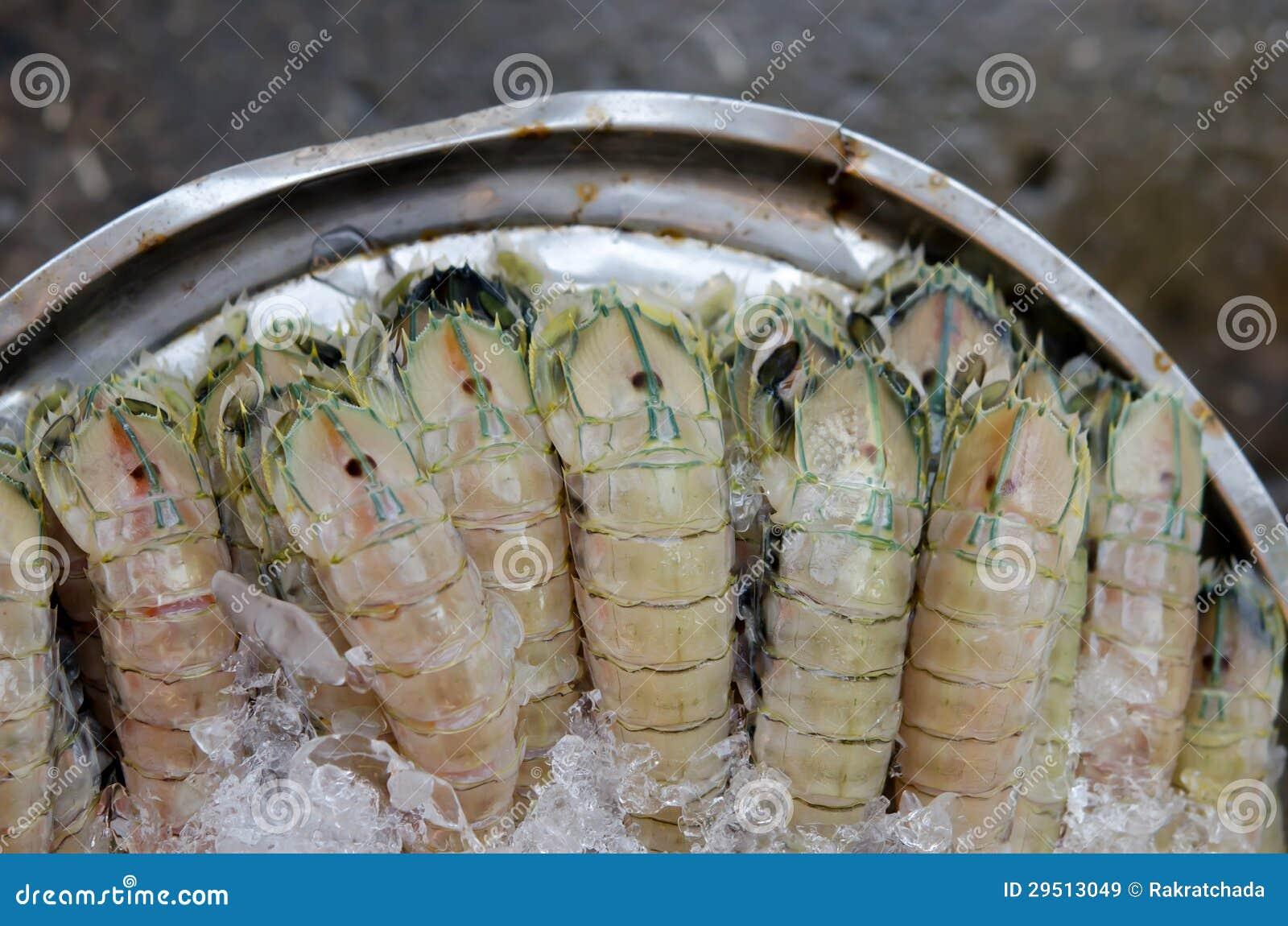 De garnalen van bidsprinkhanen