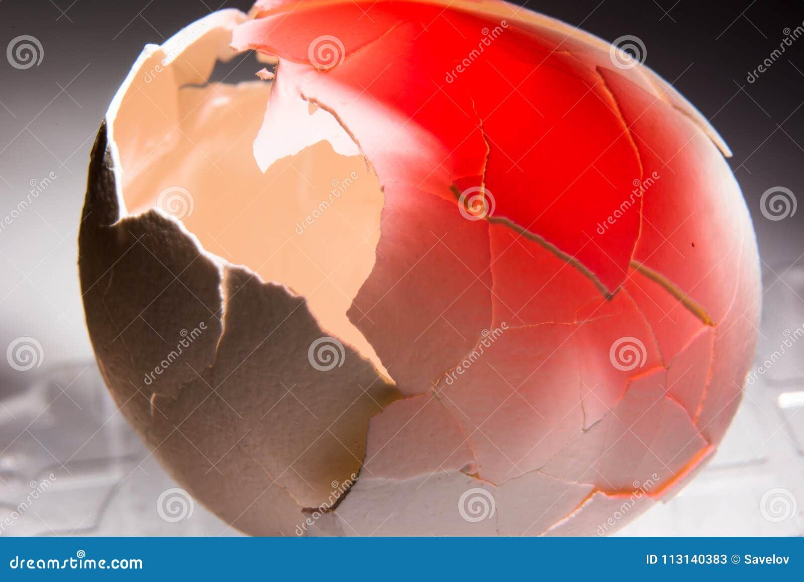 De gebarsten eierschaal voerde met rood, concept tegen abortus en slechte houding tegenover dieren